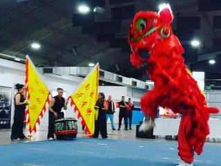 Participación en 29° Campeonato Internacional wushu y artes marciales