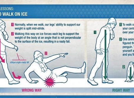 How to Avoid Slipping on Ice: Lessons Learned from a Penguin