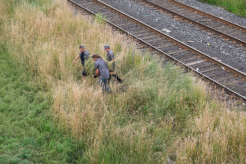 Three members of the TH&B Collective carrying a large patch of grass over train tracks, for Art Spin Hamilton 2017.