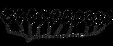 wavelength-logo-BW_transparent.png
