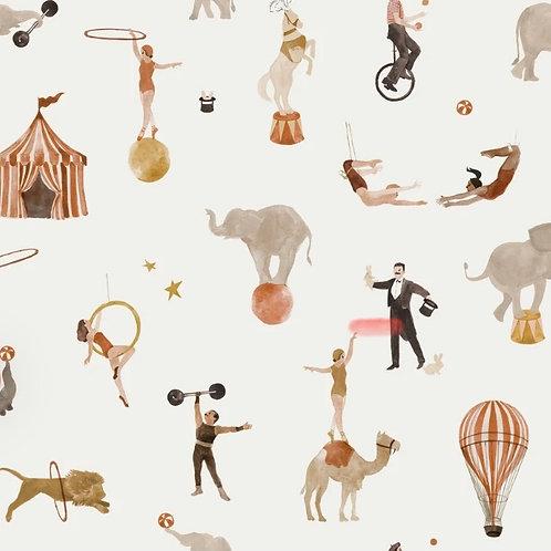 Circus Print Bummies