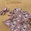 Thumbnail: Dinosaur Dress