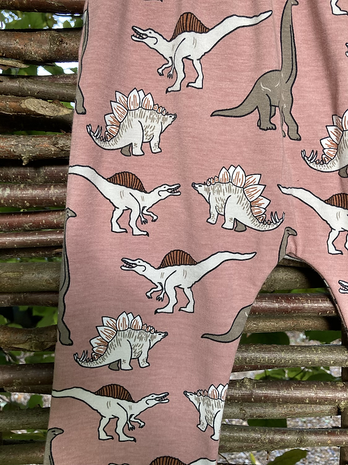 Organic Cotton Dinosaur Leggings