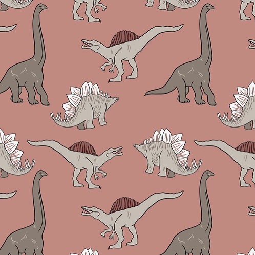 Organic Cotton Dinosaur Romper
