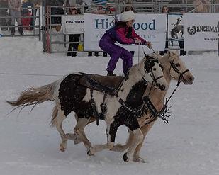 skijoring2_edited.jpg