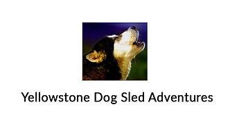 logo-yell-dog-sled-adv.jpg