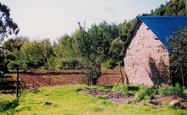 Documentation of the site. 2000