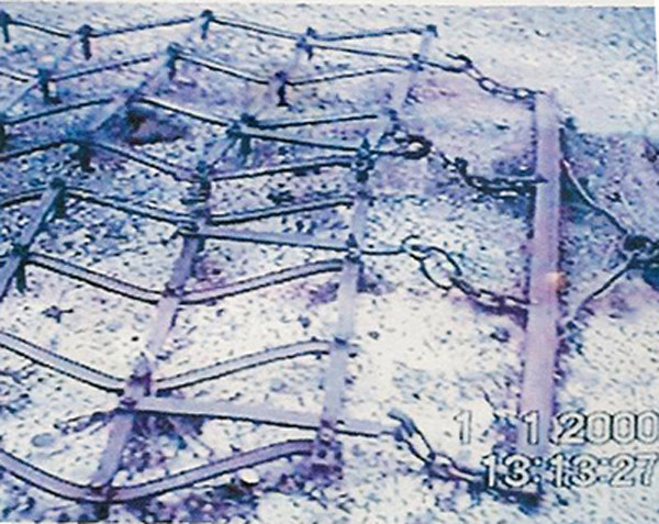 Documentation of the harrow laying next to the field. 2000