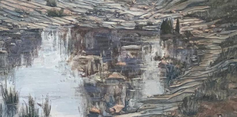 Detail of Dullstroom dam