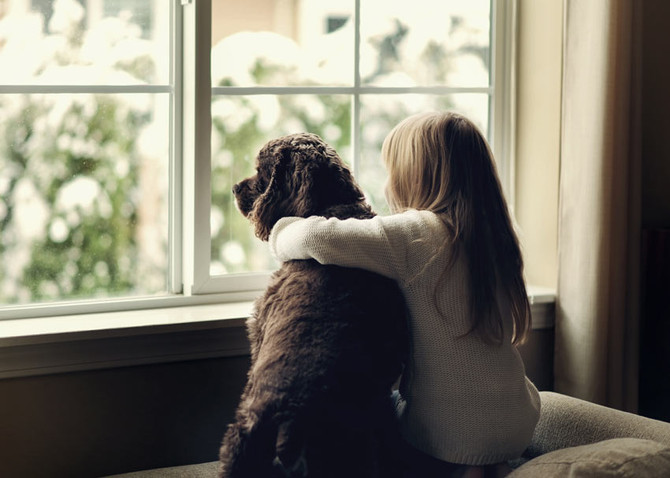 Autismo e animais de estimação: mais provas de benefícios sociais