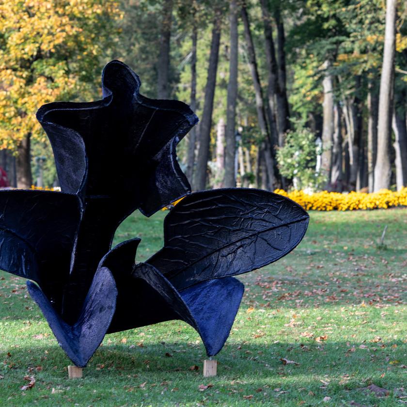 """P. Mazūras ,,Juodoji tulpė"""""""
