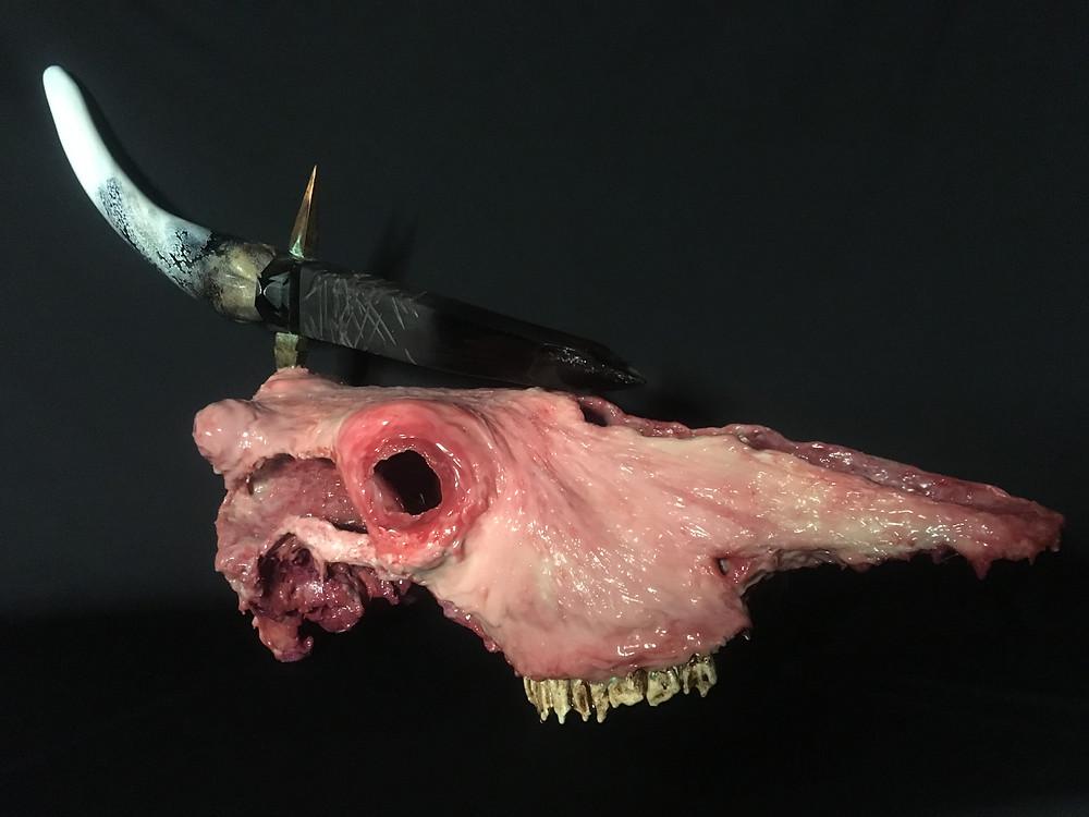Arūnas Aleksandras Daugėla 'Trofėjus'. Silikonas, kaulas, metalas, stiklas. 40x70x27cm. 2020 / Autoriaus nuotrauka