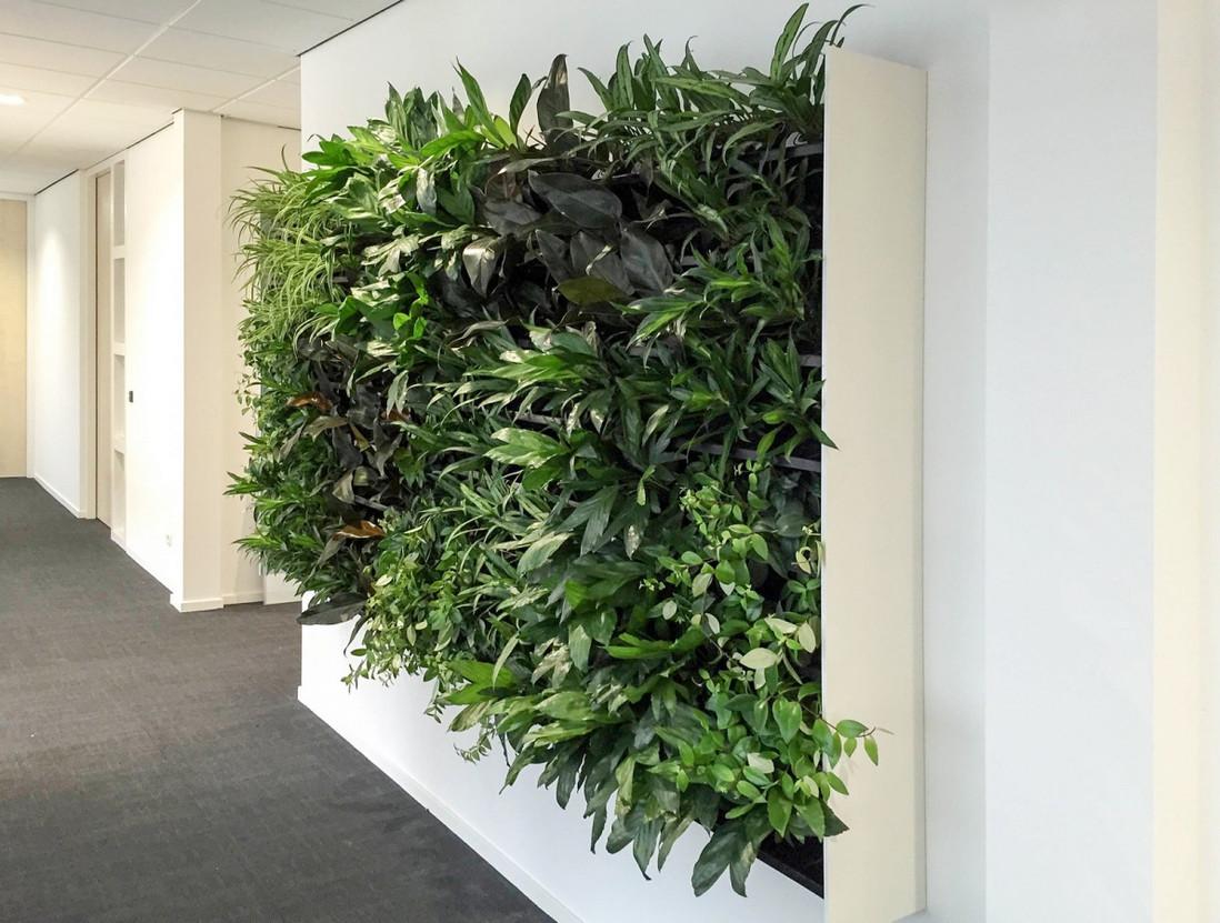nextgen_-_living-wall-17.jpg