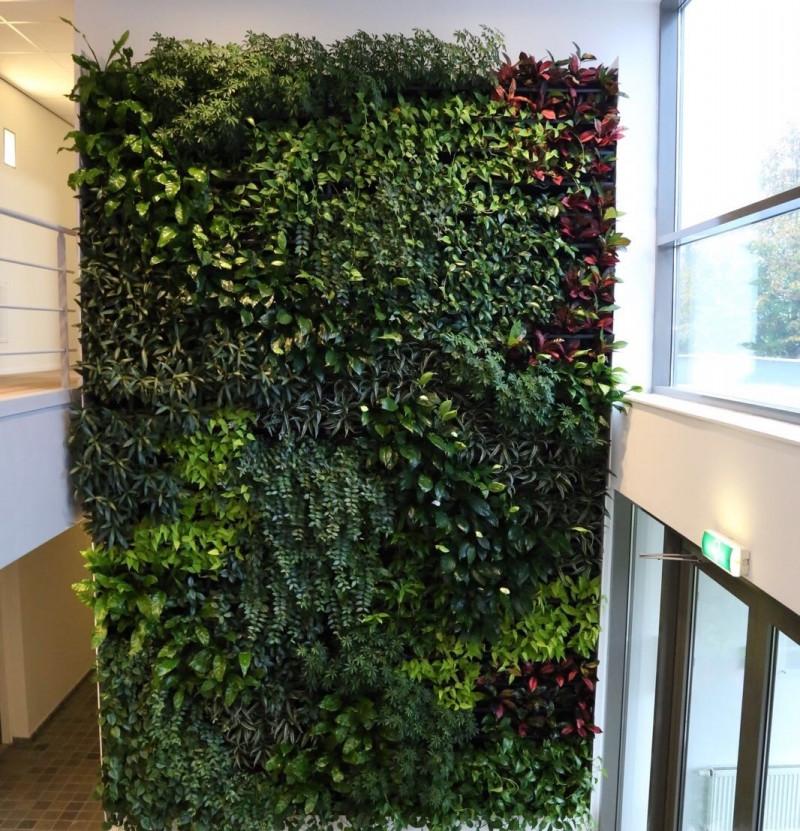 nextgen_living_walls_143.jpg