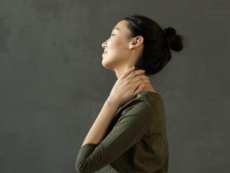 The evolution of posture