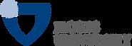 Jacobs_University_Bremen_logo.svg.png