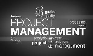 clusion, project management, pmo, service, ppm, program management