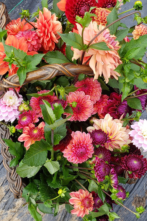 Bucketful of Flowers - Perfect for the DIYers