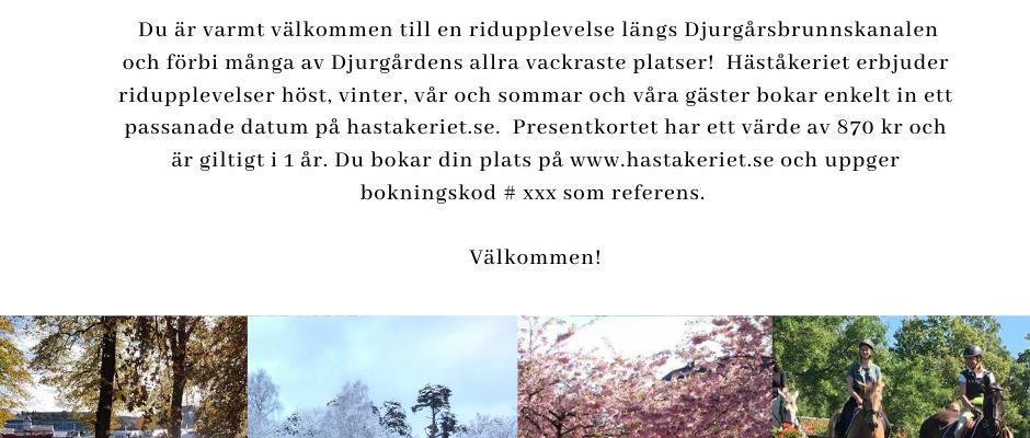 Ge bort ett presentkort på en fantastisk ridupplevelse på Kungliga Djurgården!