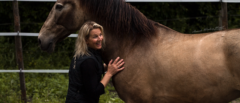 Heldagsworkshop - HeartMath, Hästar & Självledarskap