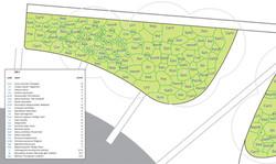 beplantingsplan stationsgebied