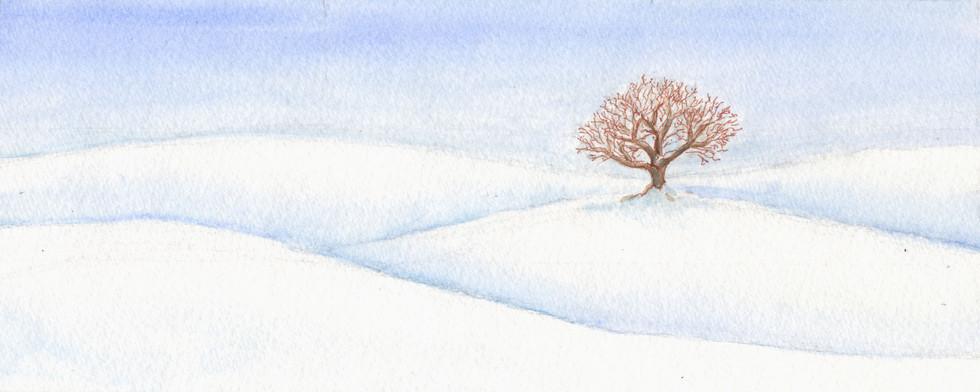Winter snow on Bunny Hill