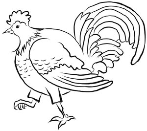 REX THE ROOSTER