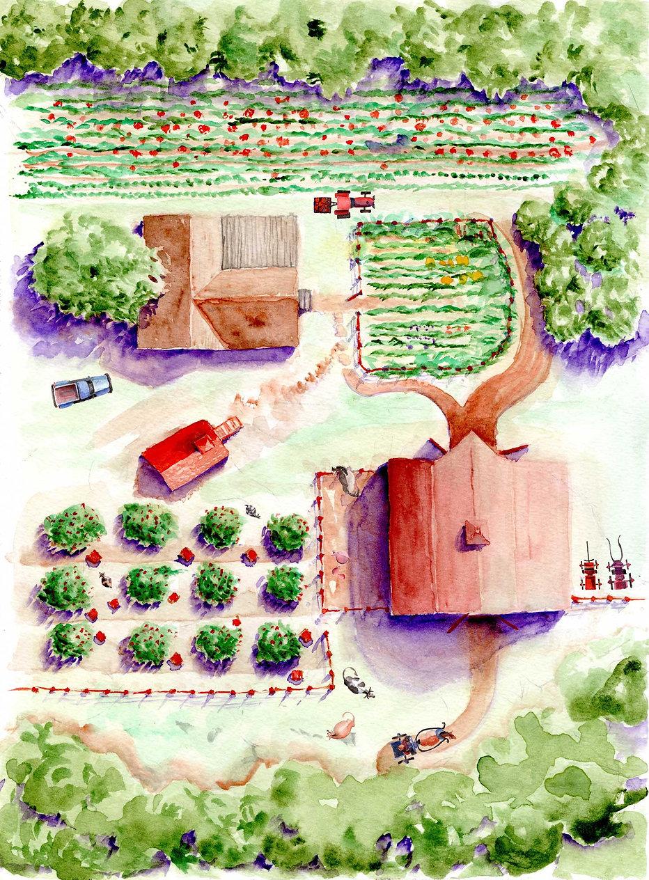 Marti Farm plan02