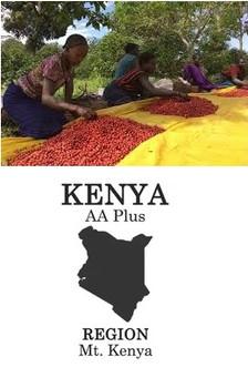 origin kenya.jpg