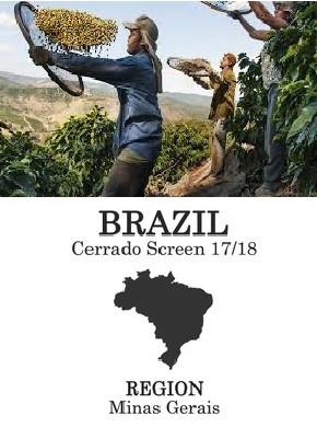 origins brazil.jpg