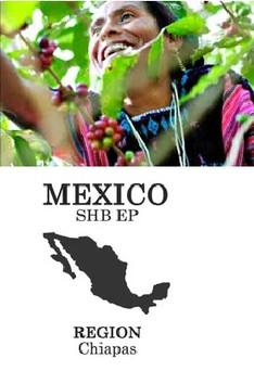 origins mexico.jpg