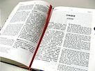chinese bible.jpg