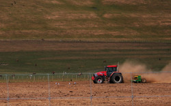 033_Tractor.jpg