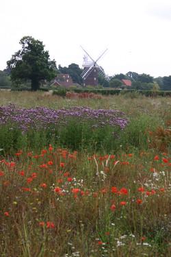 006_Windmill_rotation.jpg