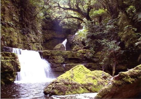 092_MacLean Falls.jpg