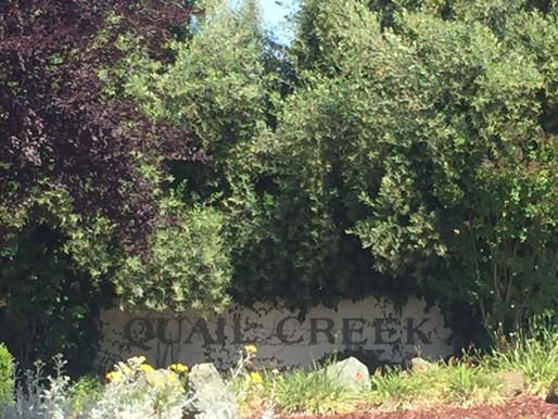 Quail Creek, Silicon Valley Outskirts