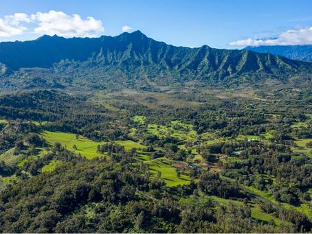 Hawaii Commercial Properties