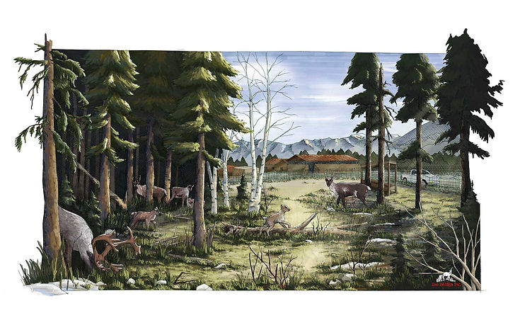 Colored drawing of caribou breeding facility done in Photoshop.