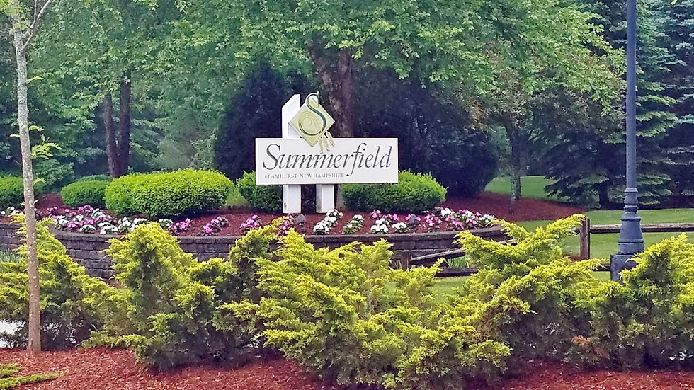 Summerfield-Entrance1-002-e1502488294334