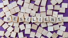 Resiliencia en la Cadena de Suministro
