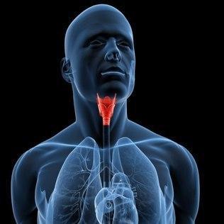 cancer-laringe.jpg