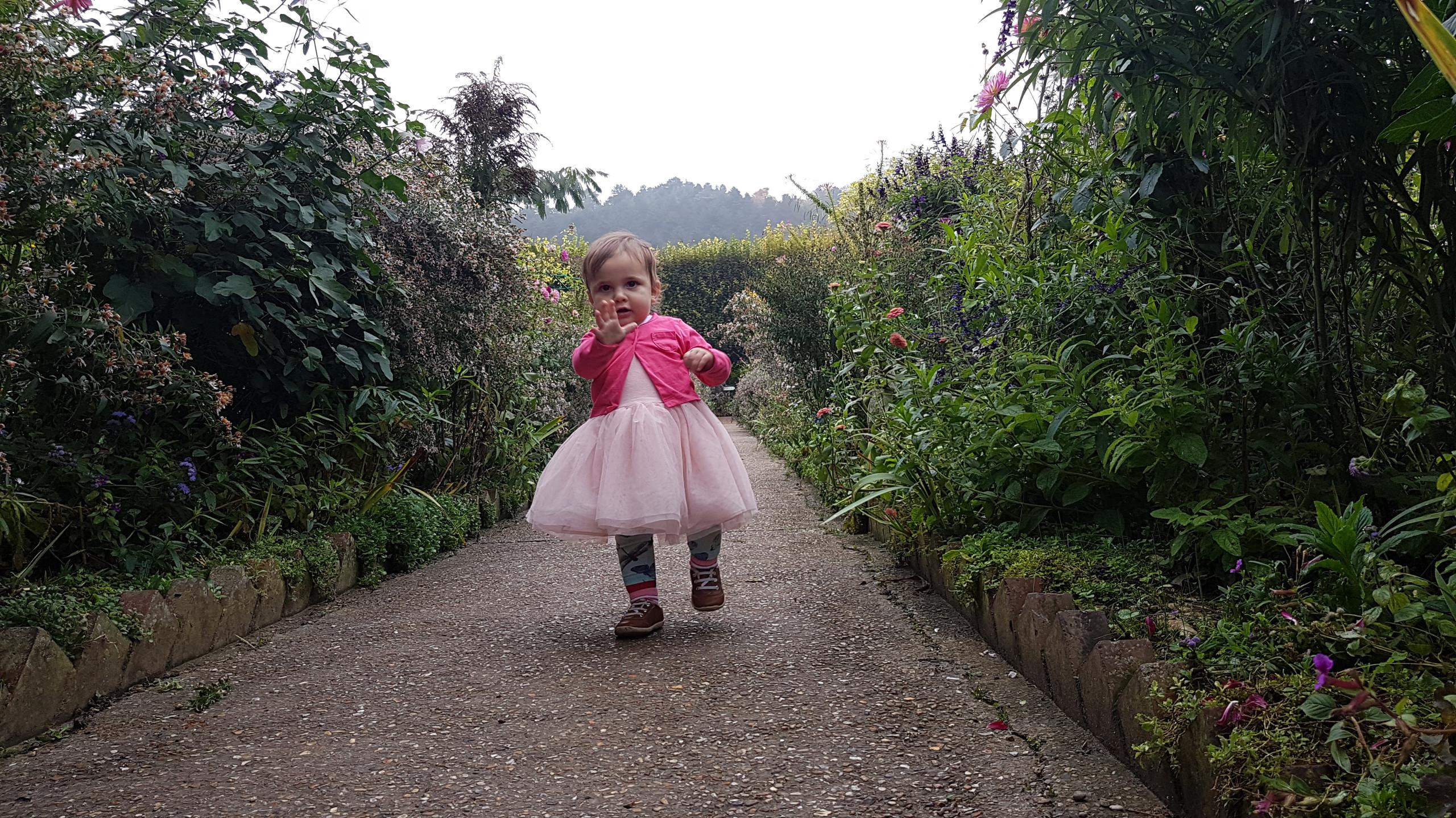 Jardin de Monet à Giverny_141516