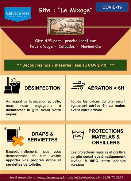 Mesures Covid-19.png
