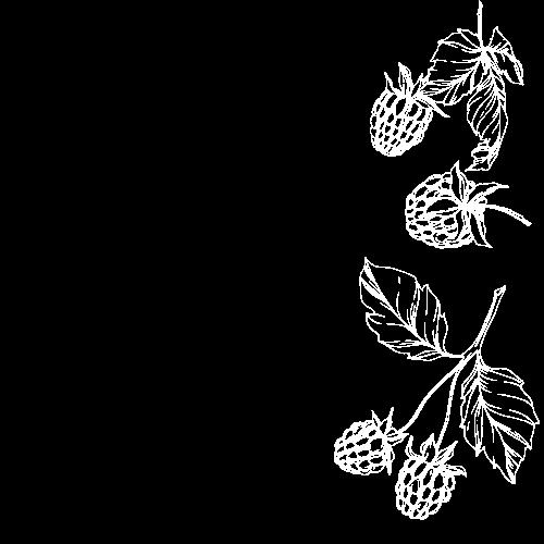 Copy of raspberries.png