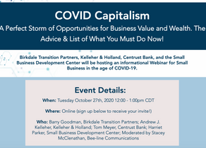 Join our Webinar— COVID Capitalism: The Perfect Storm of Opportunities for Business Value and Wealth