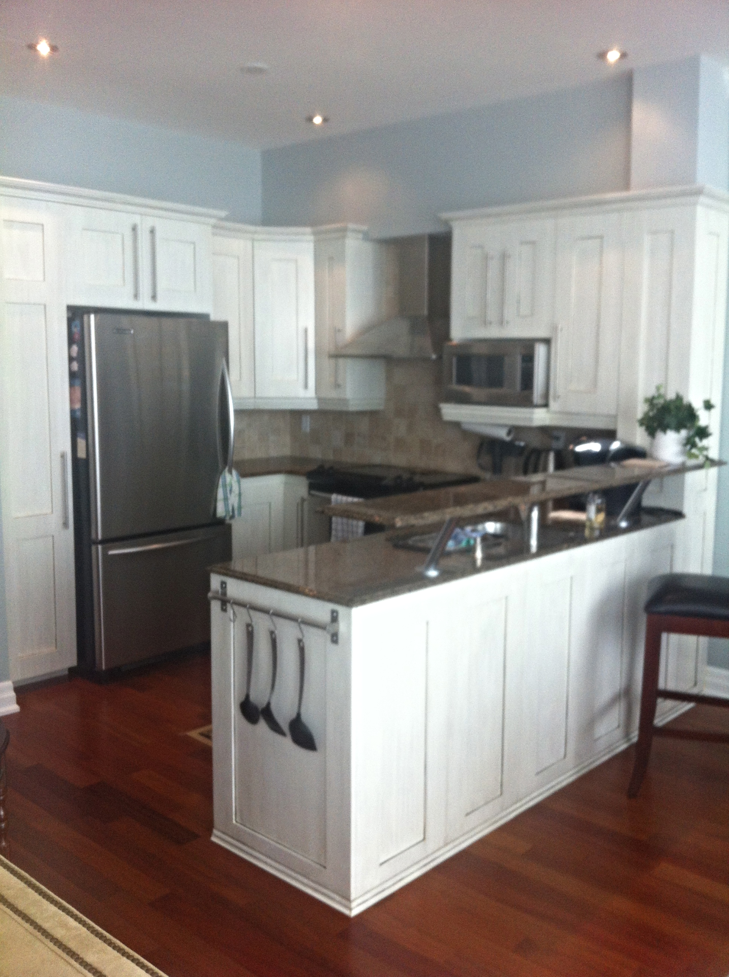 Custom Kitchen Downtown Toronto