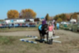 horseshow-49AK.jpg