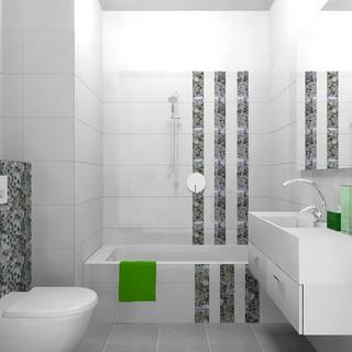 Ganeral Bathroom op2_0.jpg