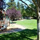Bollinger-Hills-Real-Estate-park (1).jpg