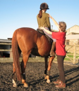 a horse rider and an alexander technique teacher